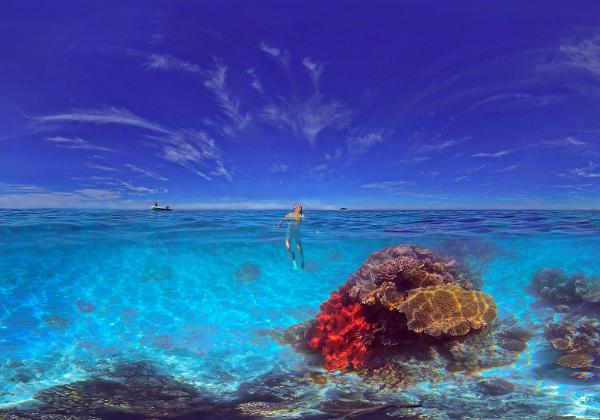 OverUnderwater images of the New Caledonia Lagoon show it like it is.